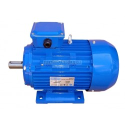 Silnik indukcyjny Eurotek IM3000