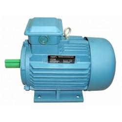 Silnik elektryczny AT124